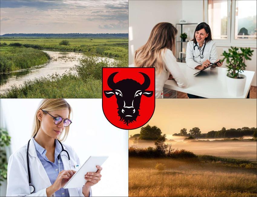 Zambrów - cennik prywatnych wizyt u immunologa - sprawdź lokalne ceny w poradniach immunologicznych