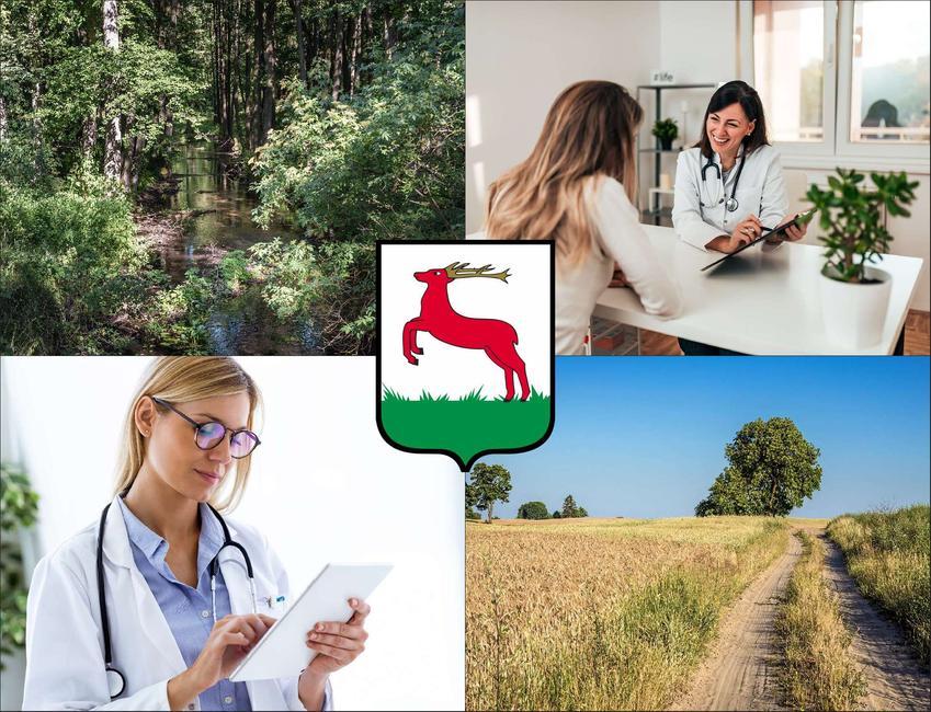 Piła - cennik prywatnych wizyt u immunologa - sprawdź lokalne ceny w poradniach immunologicznych