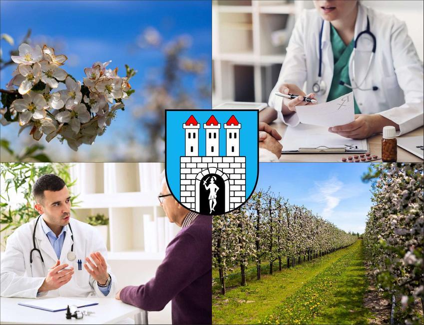 Grójec - cennik prywatnych wizyt u radiologa - sprawdź lokalne ceny badań usg