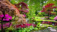 cennik projektowania ogrodów - sprawdź lokalne ceny aranżacji ogrodu