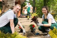 cennik usług ogrodniczych - sprawdź lokalne ceny ogrodników