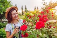 cennik zakładania ogrodów - zobacz lokalne ceny urządzenia ogrodu