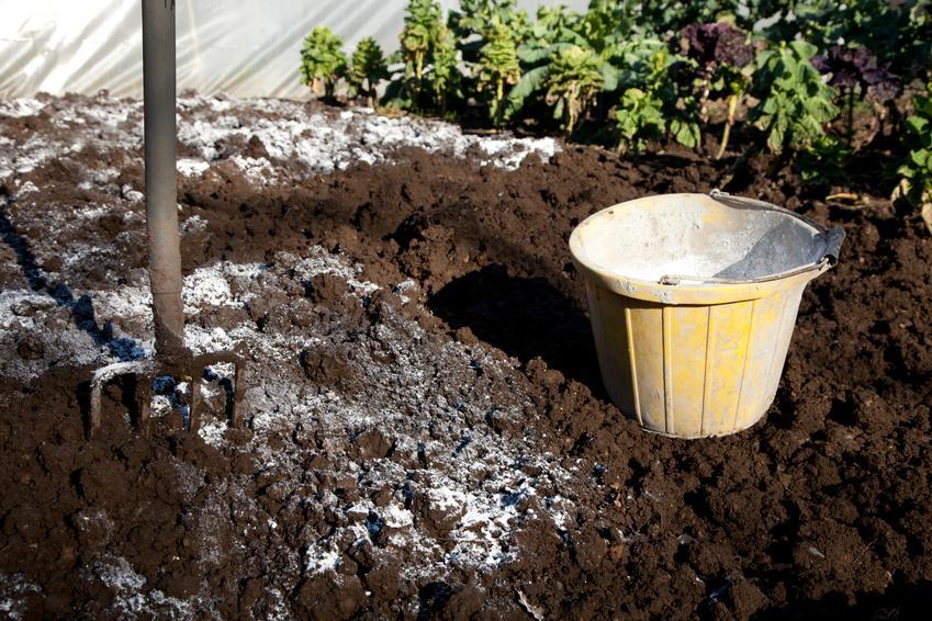 Uśredniony koszt nawożenia i wapnowania gleby pod rabaty kwiatowe.