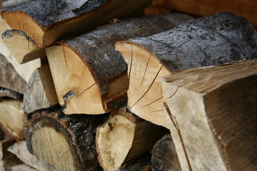 Koszt zakupu sosnowego drewna do kominka. Produkt wysuszony, gotowy do użycia.