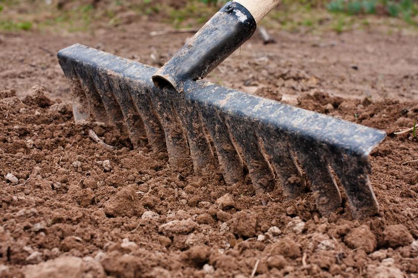 Koszt przygotowania terenu pod założenie trawnika. Cena obejmuje wyrównanie i oczyszczenie podłoża.