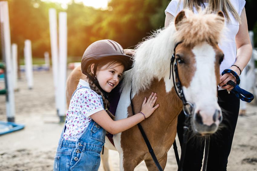 Średni koszt nauki jazdy na lonży. Cena za 30 - 40 minutową lekcję. Szkokła jeździecka z pośredniej półki cenowej.