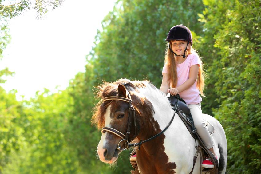 Średni koszt nauki jazdy na kucyku. Zajęcia dla dzieci, czas trwania około pół godziny. Szkoła jeździecka z pośredniej póki cenowej.