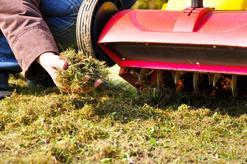 Cennik wertykulacji trawnika 2021 w ponad 150 miastach w Polsce