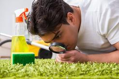 Cennik czyszczenia dywanów shaggy 2021 w ponad 150 miastach w Polsce