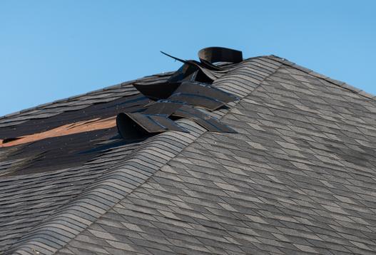 papa na dach