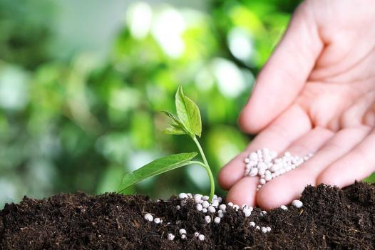 chemia ogrodnicza